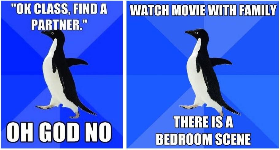 Funny Socially Awkward Penguin