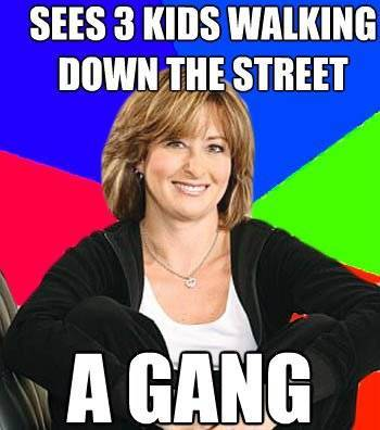 Suburban Mom Meme Sees A Gang