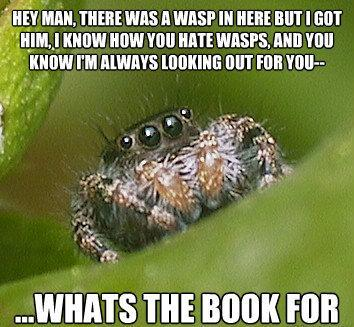 Misunderstood Spider Gets Hit With A Book