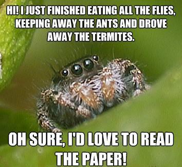 The Misunderstood House Spider Meme