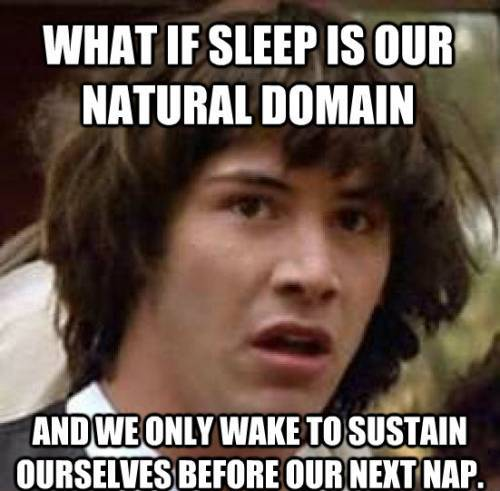 Stoned Keanu Meme On Sleep And Life