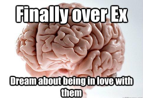 Brain Meme Ex Dream