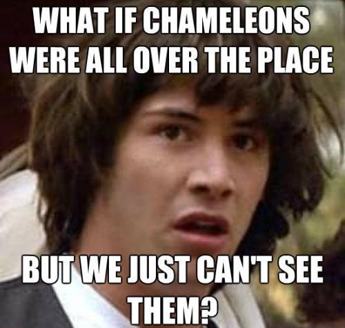 Conspiracy Meme On Chameleons