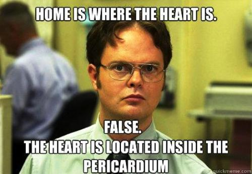 dwight-schrute-facts-home-heart