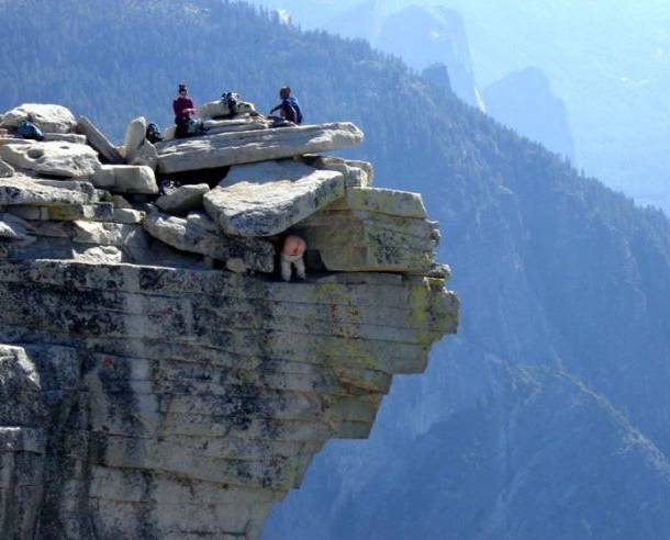 best-photobombs-epic-mountain