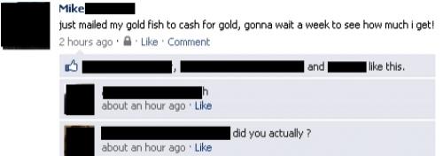 dumbest-facebook-posts-goldfish-gold