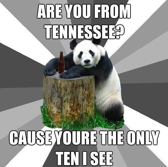 Are You From Tennessee Pickup Line Panda Memes