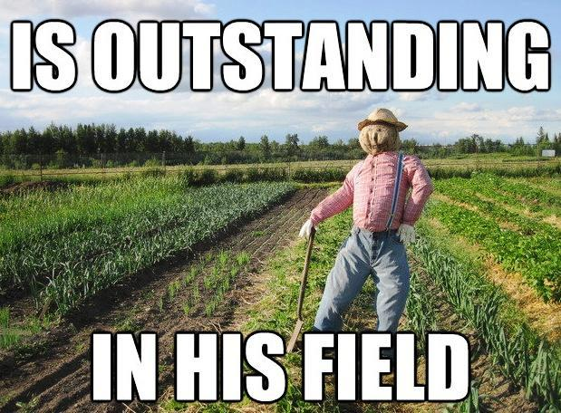 Scarecrow Is The Top In His Field