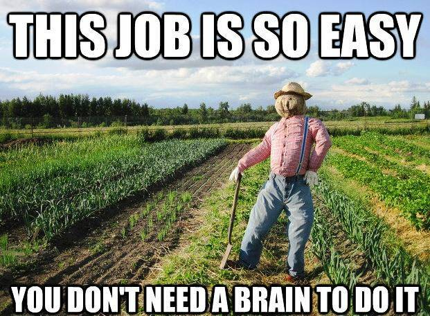 Scarecrow Has An Easy Job