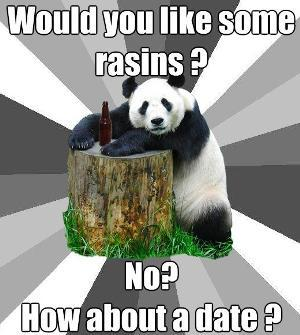 pick-up-line-panda-meme