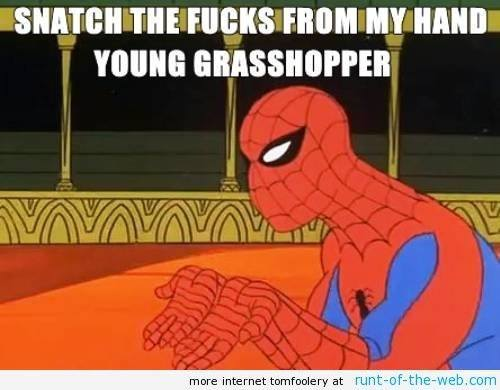 Spider-Man Meme Grasshopper