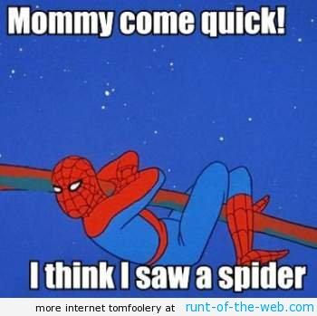spider-man-meme