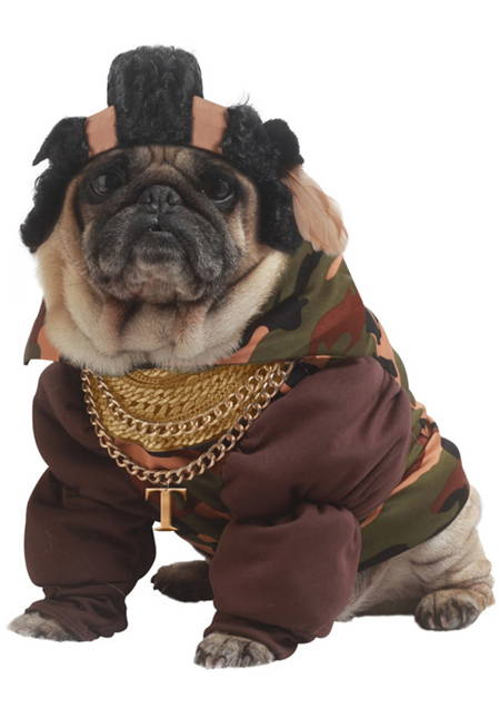 Halloween Pugs Ice T Costume