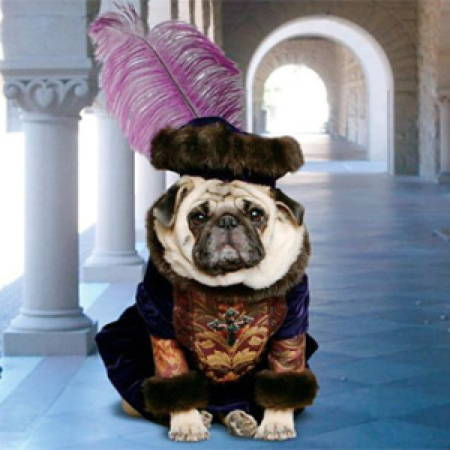 Halloween Pugs Shakespeare