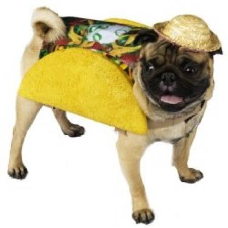 Halloween Pugs Taco