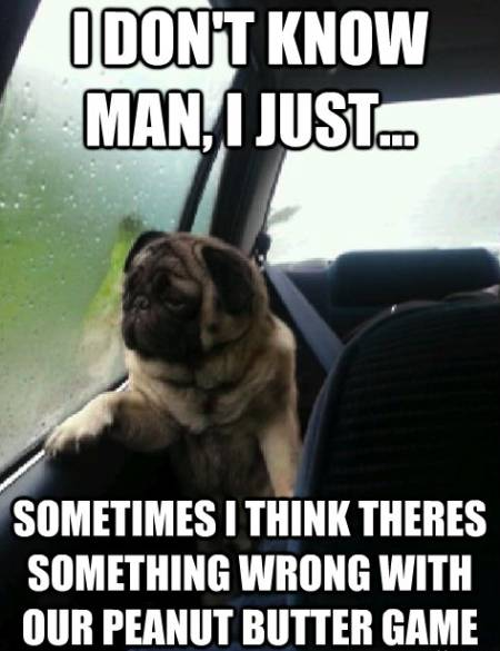 introspective-pug-peanut-butter-game