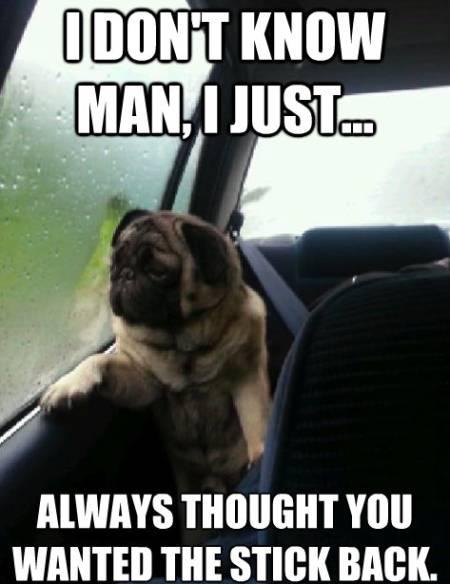 Pugs Meme Stick