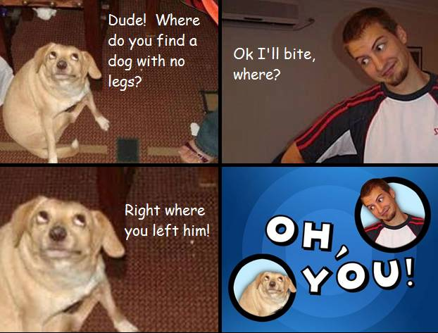 oh-you-dog-no-legs