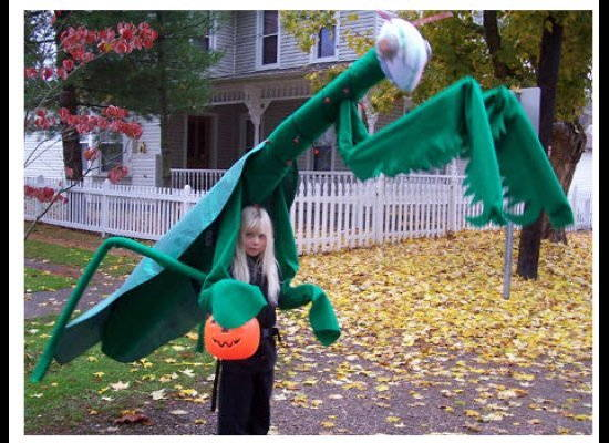 weird-halloween-kids-praying-mantis