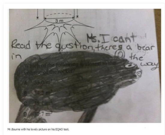 Funny Exam Answers Bear