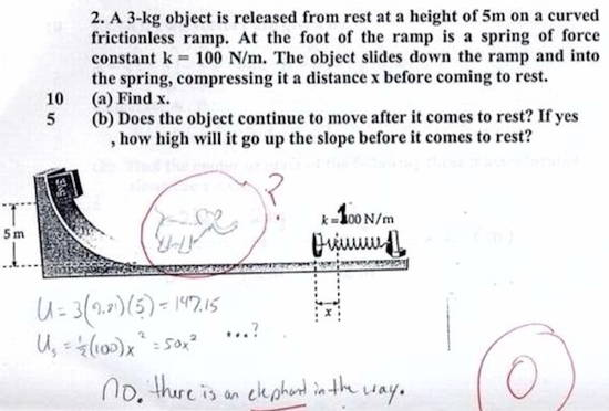 Worst Exam Answers Elephant