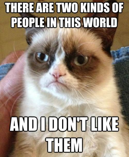 Grumpy Cat Meme Two People In This World