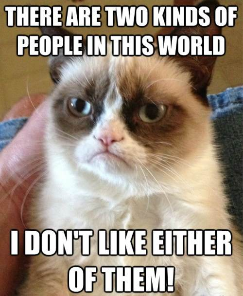 Grumpy Cat Doesn't Like People