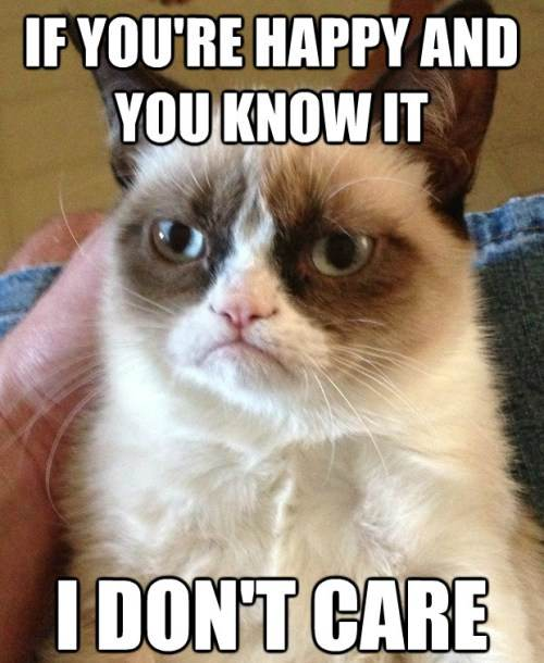 Grumpy Cat Happy And You Know It