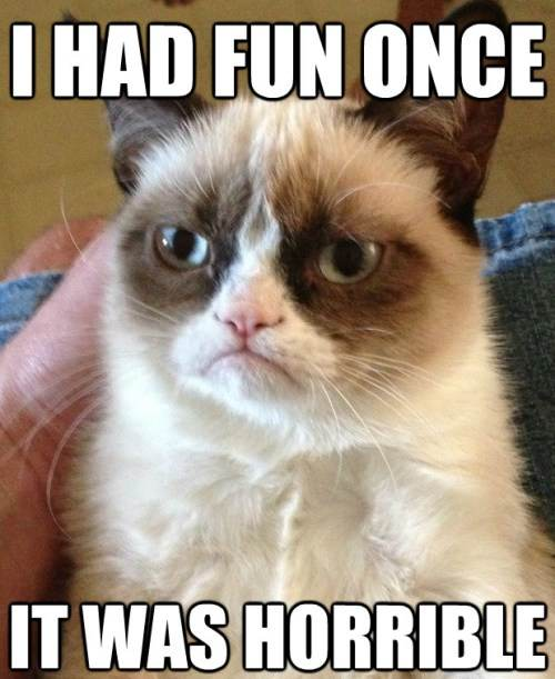 Grumpy Cat Had Fun Once