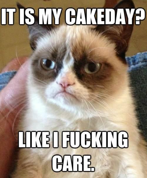 Grumpy Cat Hates Cake Day
