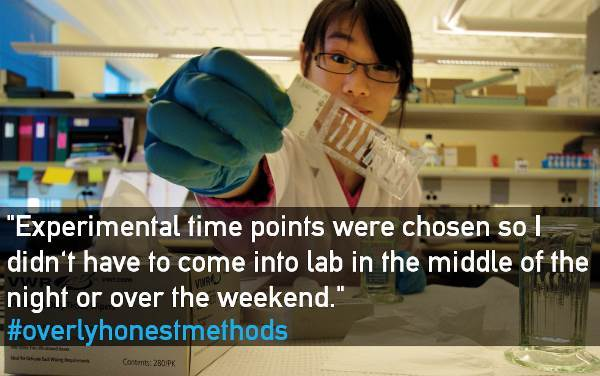 overly-honest-methods-experimental-time-points
