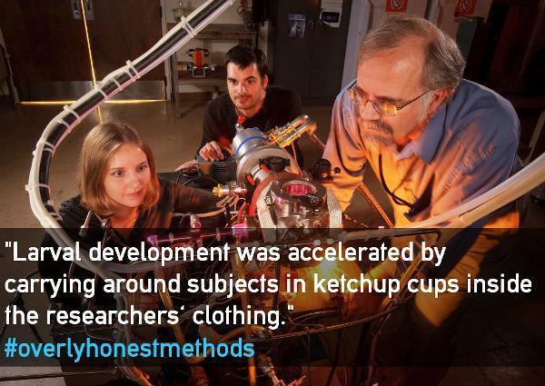 overly-honest-methods-larval-development
