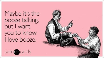 Someecards Drinking I Love Booze