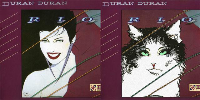 Kitten Covers Duran Duran