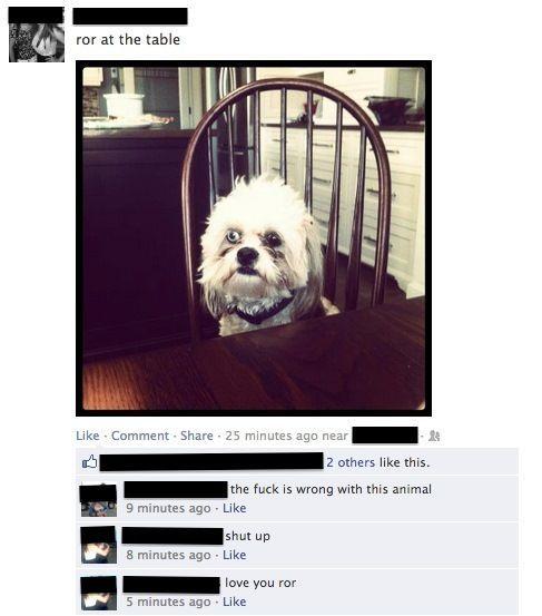 awkward-facebook-pictures-weird-dog