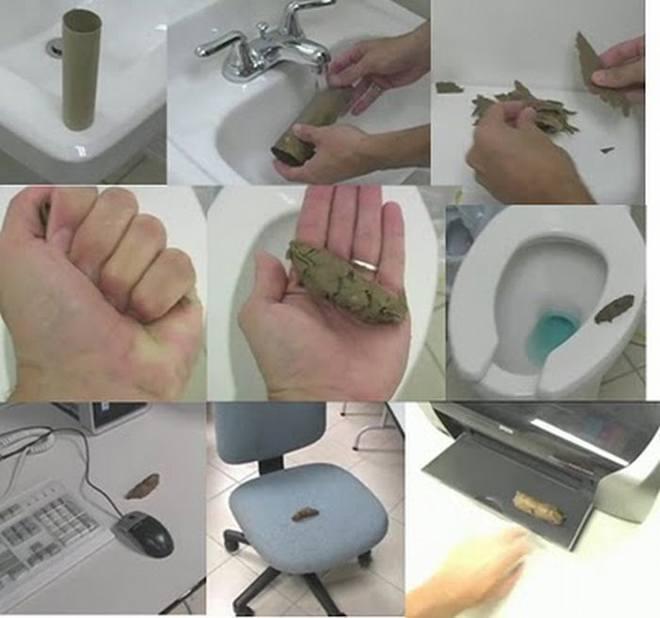 Fake Poop Prank