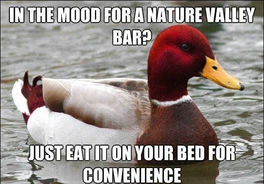 Bad Advice About Nature Valley Bars
