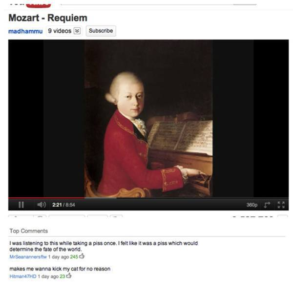 worst-youtube-comments-kick-cat