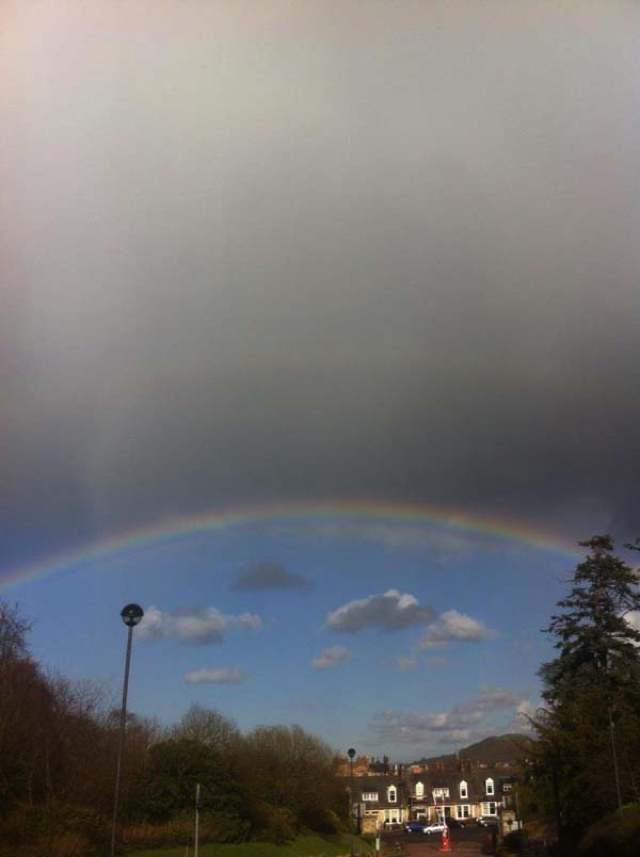 best-viral-pictures-week-8-rainbow