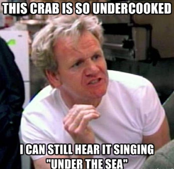 25 Of The Funniest Chef Gordon Ramsay Memes