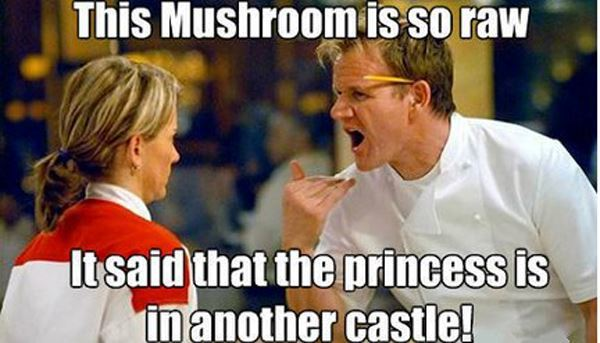 Best Chef Gordon Ramsay Memes