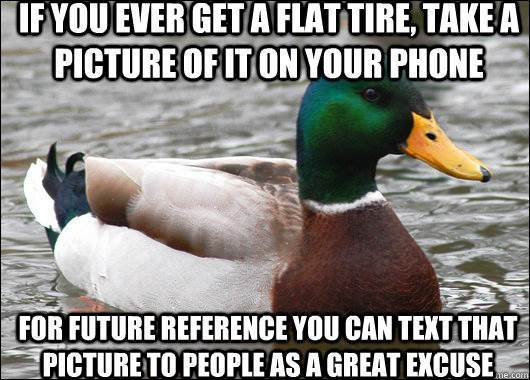 Actual Advice Mallard Flat Tire