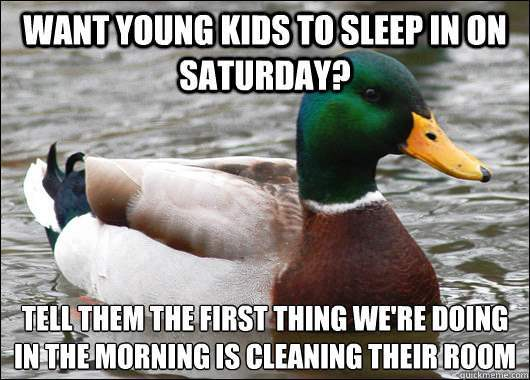 Actual Advice Mallard On Sleeping In