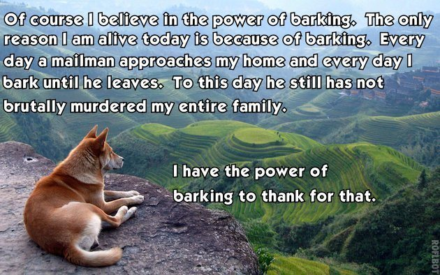 best-viral-pictures-power-barking