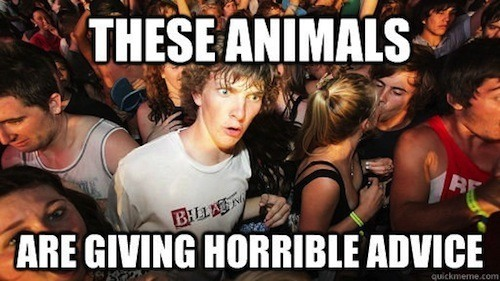 faith-in-humanity-restored-meme-animals