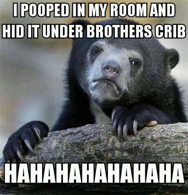 Funniest Confession Bear Memes