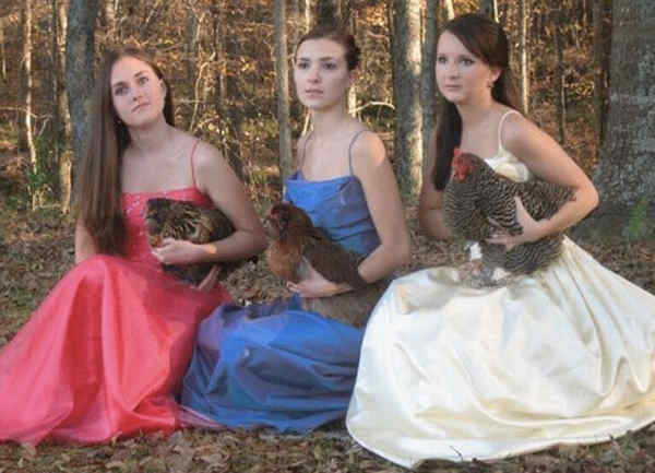 Prom Photo With Chickens
