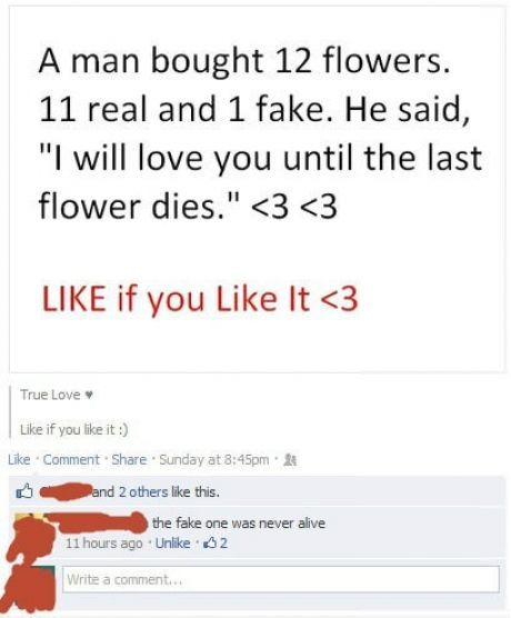 Fake Flowers Facebook Comment