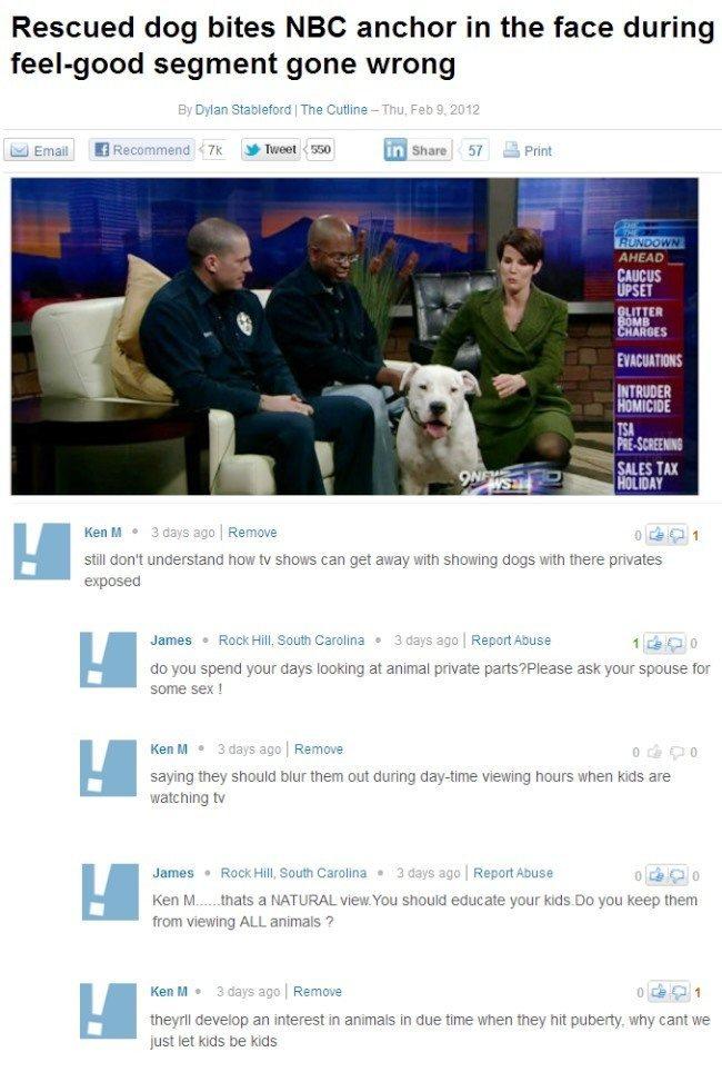 Internet Troll Rescued Dog