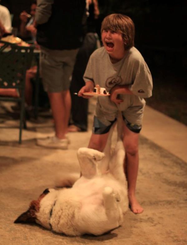 Dog Kick